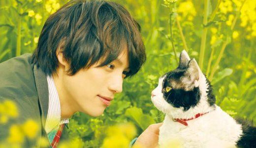 「旅猫リポート」映画(邦画)フル動画を無料視聴する!(主演:福士蒼汰)Dailymotion、Pandoraでは見れる?